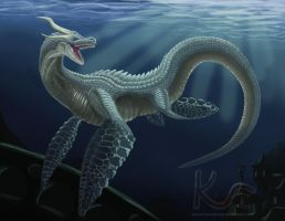 Sea Dragon by Tektyx