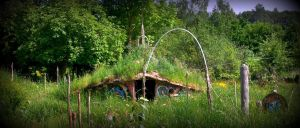 celtic roundhouse grass roof in the garden by santosam81
