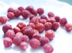 Berries by Manne-Lise
