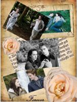 Bella and Edward by pickleartist