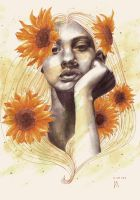Helianthus by charonmncr