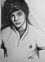 Liam Payne by Lmk-Arts