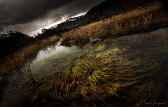 Dead Marshes by alexandre-deschaumes
