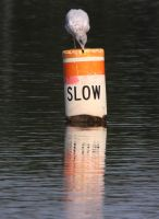 slow by twombold