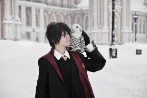 Harry Potter cosplay 1 by Eletiel