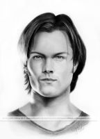 Draw Jared by hoernchen610