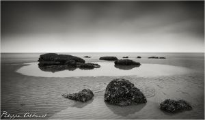 Black Cow beach by Philippe-Albanel