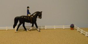Tall Tale's Dressage Training by limitededitiongal