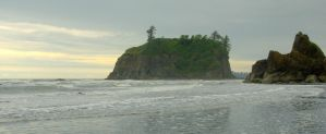 Ruby Beach, Olympic Peninsula, Washington VII by PamplemousseCeil