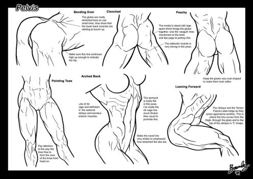 Tutorial: Pelvis + Butts 2 by Bambs79