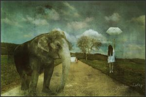 Elephant on the road by Joalita-lady