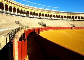 Seville Bull Fight Festival 05 by abelamario