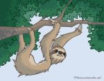 Sloth by lithiumboy