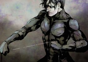 Nightwing by matsuaki