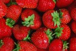Strawberries by Foto-front