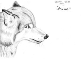 Old wolf drawing by Reborn-Illusion