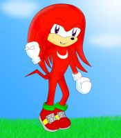 Sonic- Knuckles the Echidna by Garfield141992