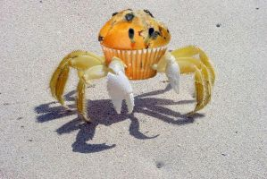 Muffin Crab by goathoof