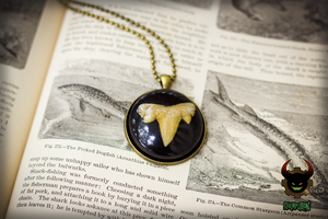 Shark Bite - Shark Tooth Fossil Resin Pendant by SteampunkOni