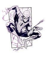 Spiderman by millsy1c