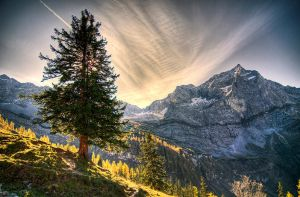 alpine view by mutrus