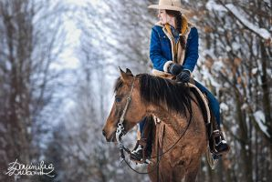 wild west winter by dubowik