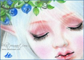 Berrylicious Dream ACEO by Katerina-Art