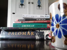 Graphic Novels and Coffee in the Kitchen by SirDNA109