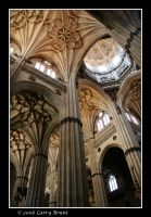 Cathedral - Salamanca II by inessentialstuff