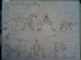 Cerebrasects Design Sheet by warp2002