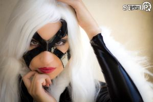 Black Cat Cosplay by STeamUP