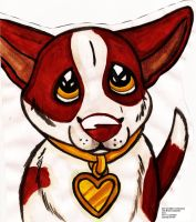 DOG BREED CHALLENGE-Chihuahua-Red and White by Senwolf10