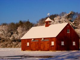 Winter Barn by TriciaStucenski