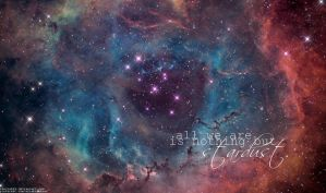 The Rosette Nebula by renzieb26