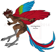 [Auction] - Wood-Macaw Half-Breed Kiso CLOSED by Linkaton