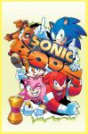 AA-SonicBoom06.Cover by herms85