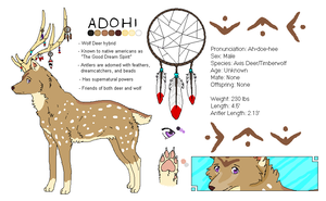 Adohi Reference Sheet by Gazzelles