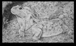 Stipple_Lizard by omonteon