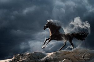 Wuthering Heights by Vitaly-Sokol