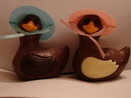 Chocolate Mr and Mrs Duck by XxDanniexX