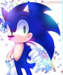 Sonic The Hedgehog by BloodRain98
