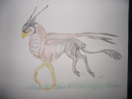 Falcon Hippogriff by Armadeo