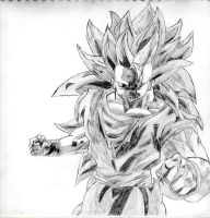 Super Saiyan 3 Goku by PanTrunks
