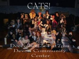 Cats - JMHS 2008 by LoveLydetective