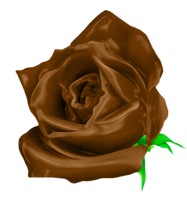 Gorgeous Chocolate Rose by MrAngryDog