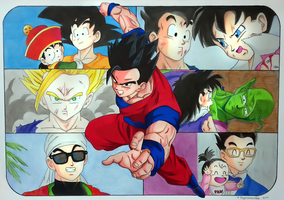 Son Gohan collage by elfaba1993