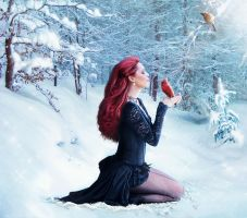 Magic of Winter by revande