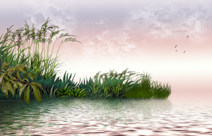 Background 3 - Serenity lake by lifeblue