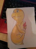 Cute Charmander by Zodiax3
