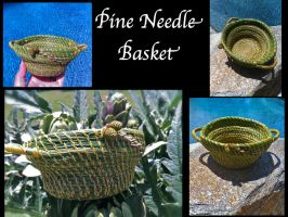 Pine Basket by Arboris-Silvestre